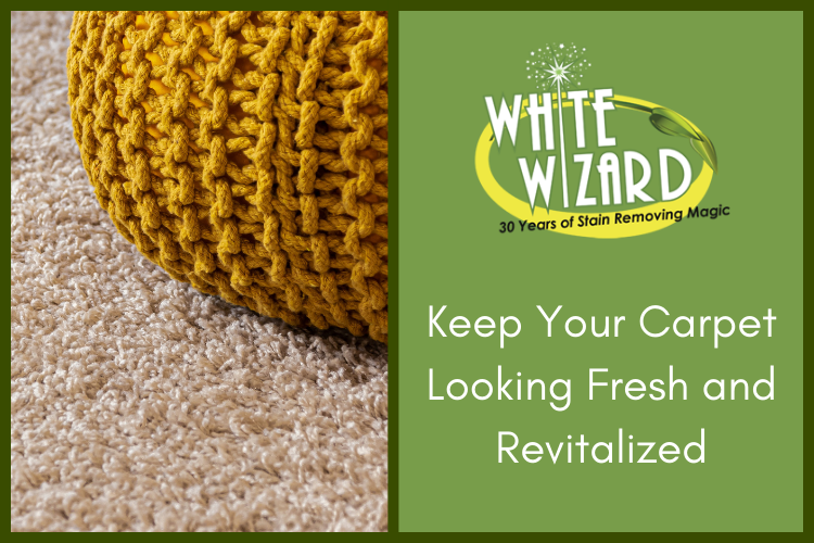 Keep Your Carpet Looking Fresh and Revitalized